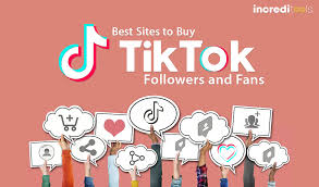 Just How To Get Followers On TikTok