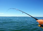Kinds Of Fishing Rods Described And Guide